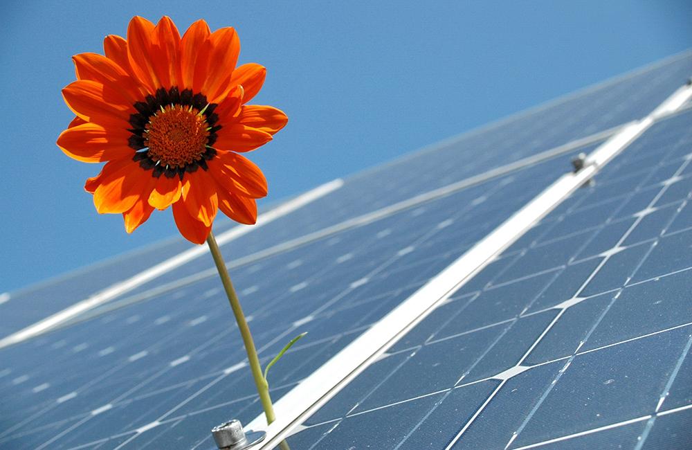 Британский солнечный завод продает электроэнергию