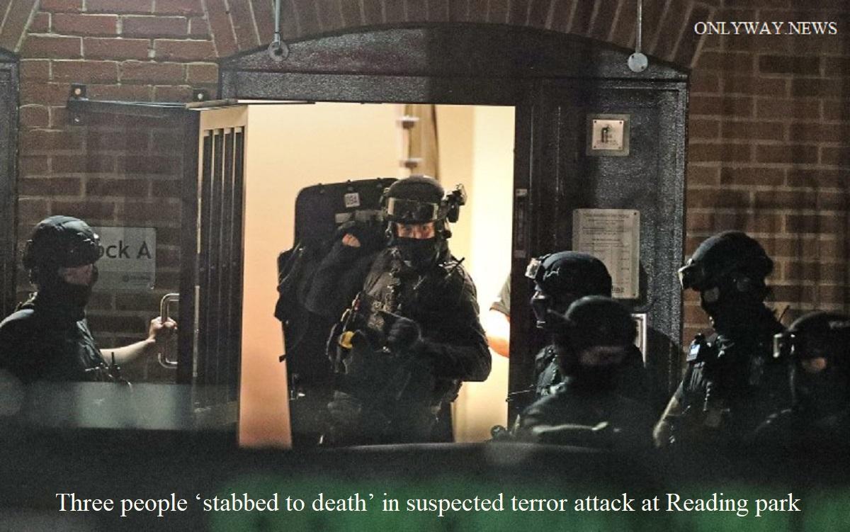 """Три человека """"зарезали насмерть"""" в предполагаемом теракте в парке Рединг."""